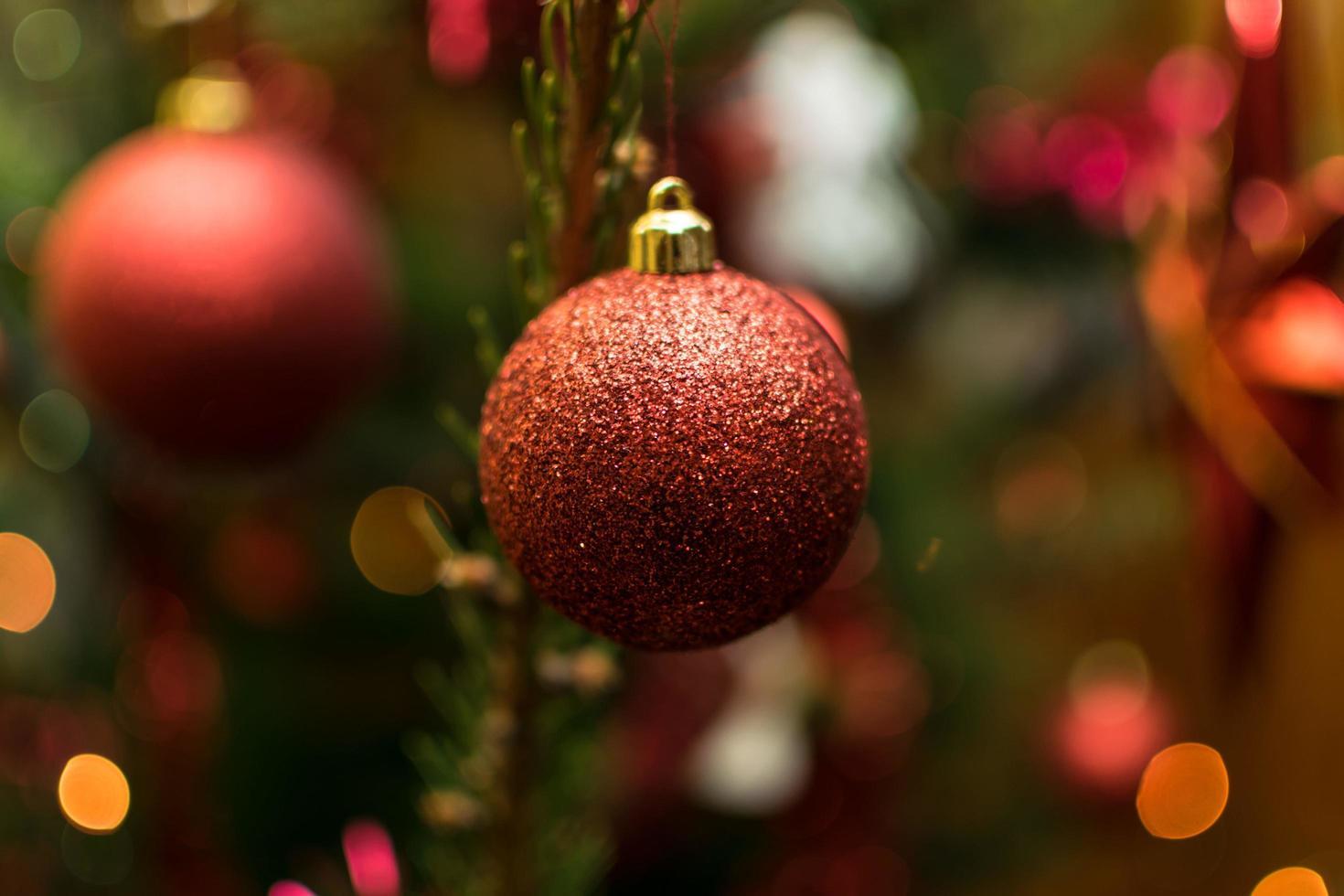 bombillas rojas de navidad foto