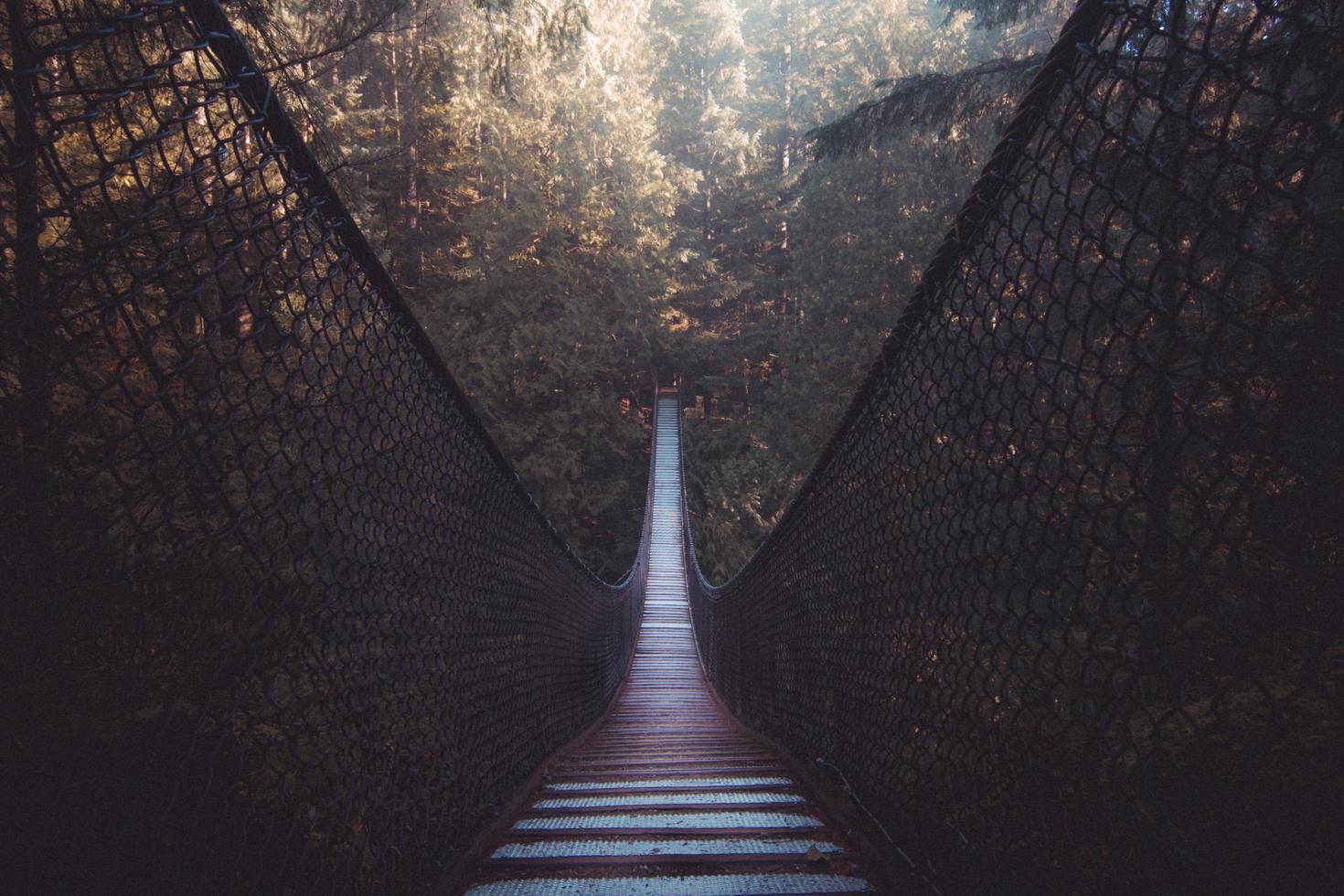 Wooden bridge in forest photo