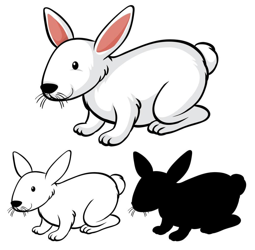 Rabbit cartoon set vector