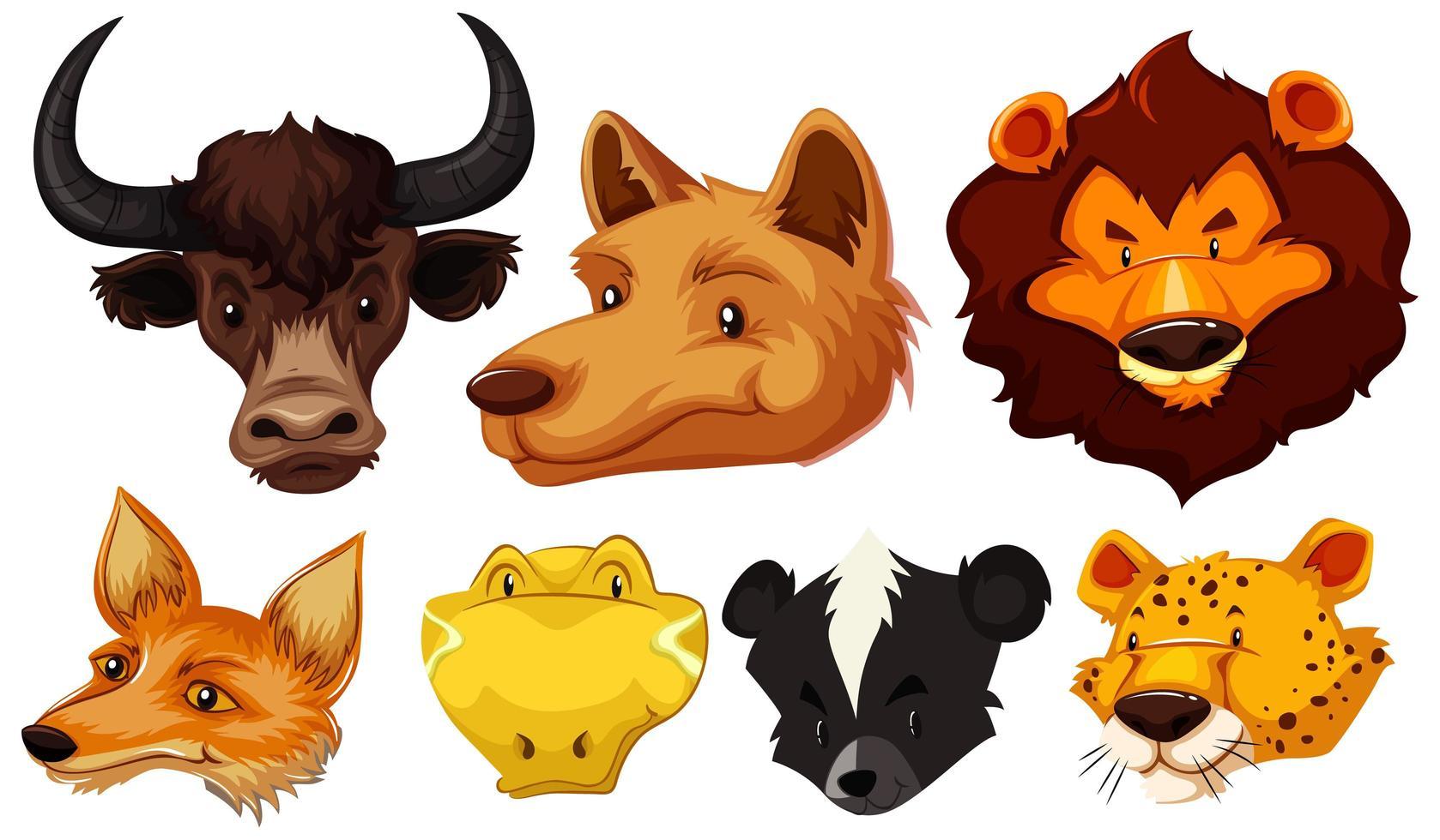 conjunto de varias cabezas de animales vector