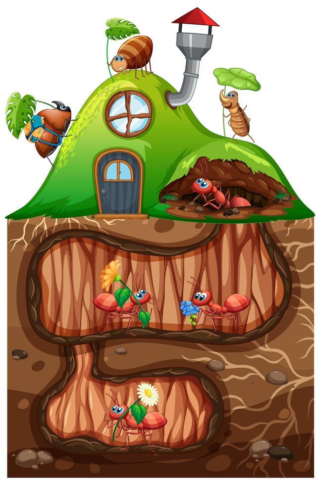escena con hormigas viviendo bajo tierra en el jardín vector