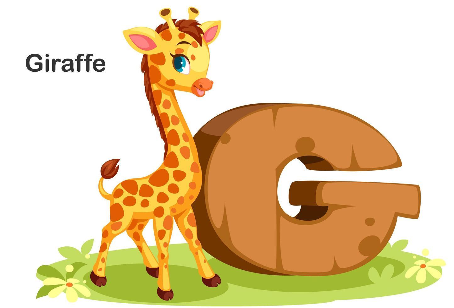 g pour girafe vecteur
