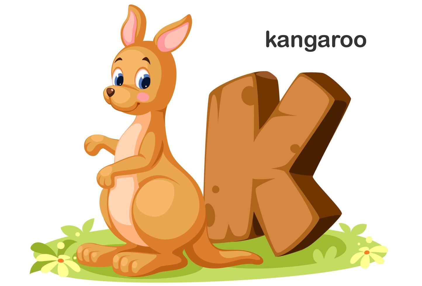 K for Kangaroo vector