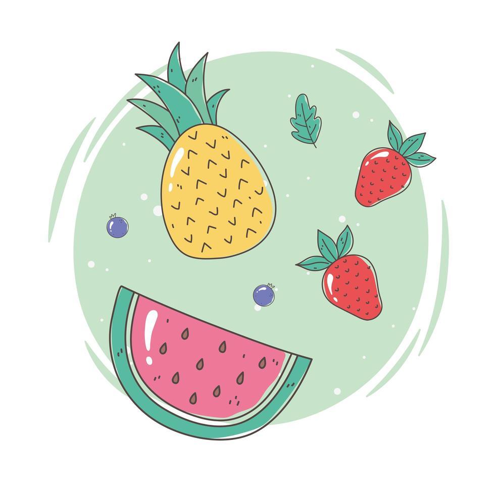 ensemble de fruits frais vecteur