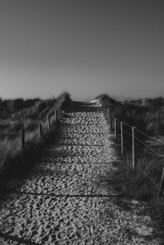 Camino de arena con vallas en la playa foto