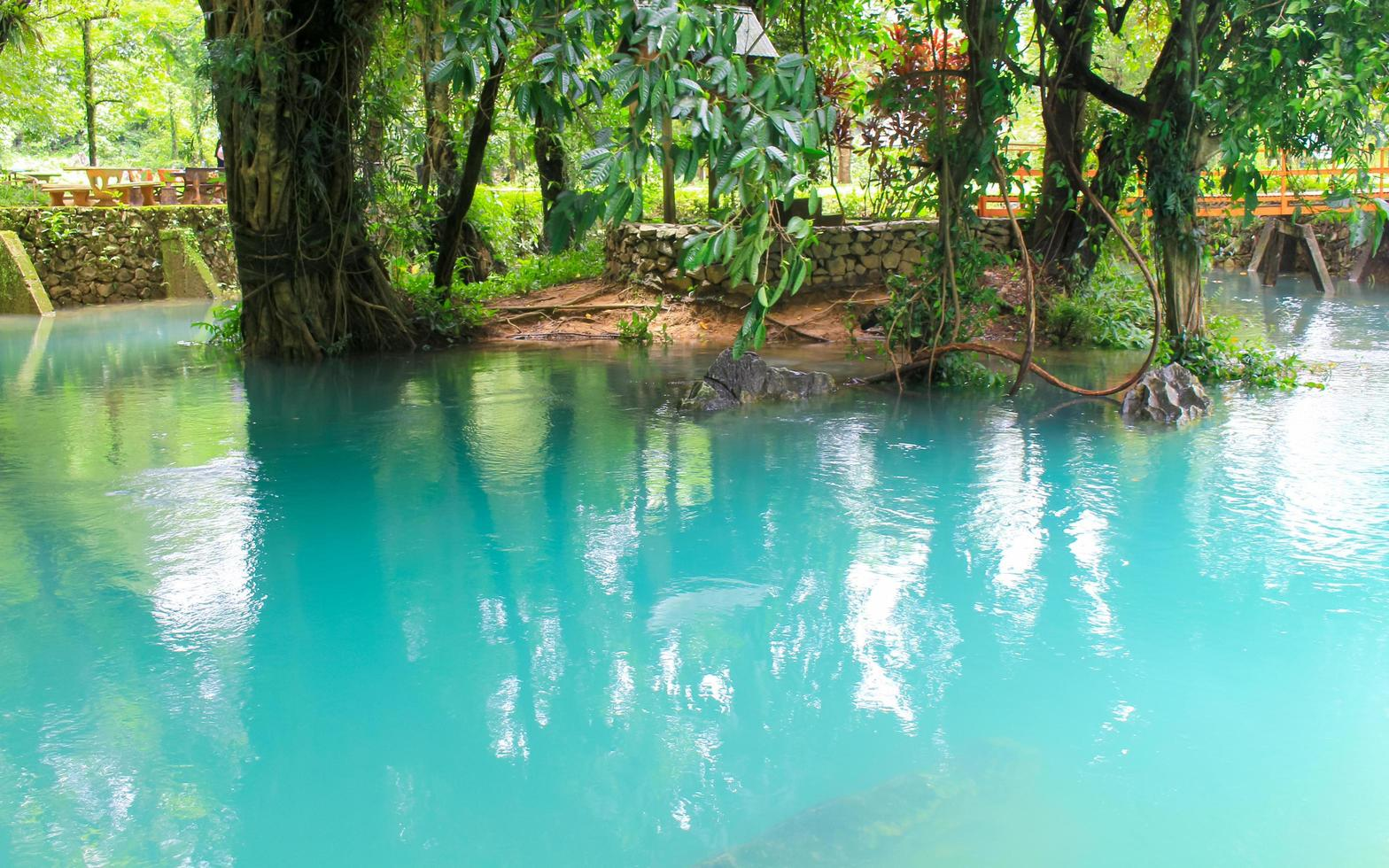 Blue water in park photo