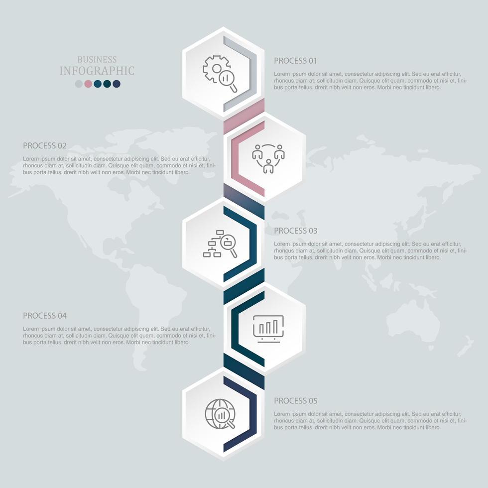 infografica verticale collegata esagono 5 passaggi vettore