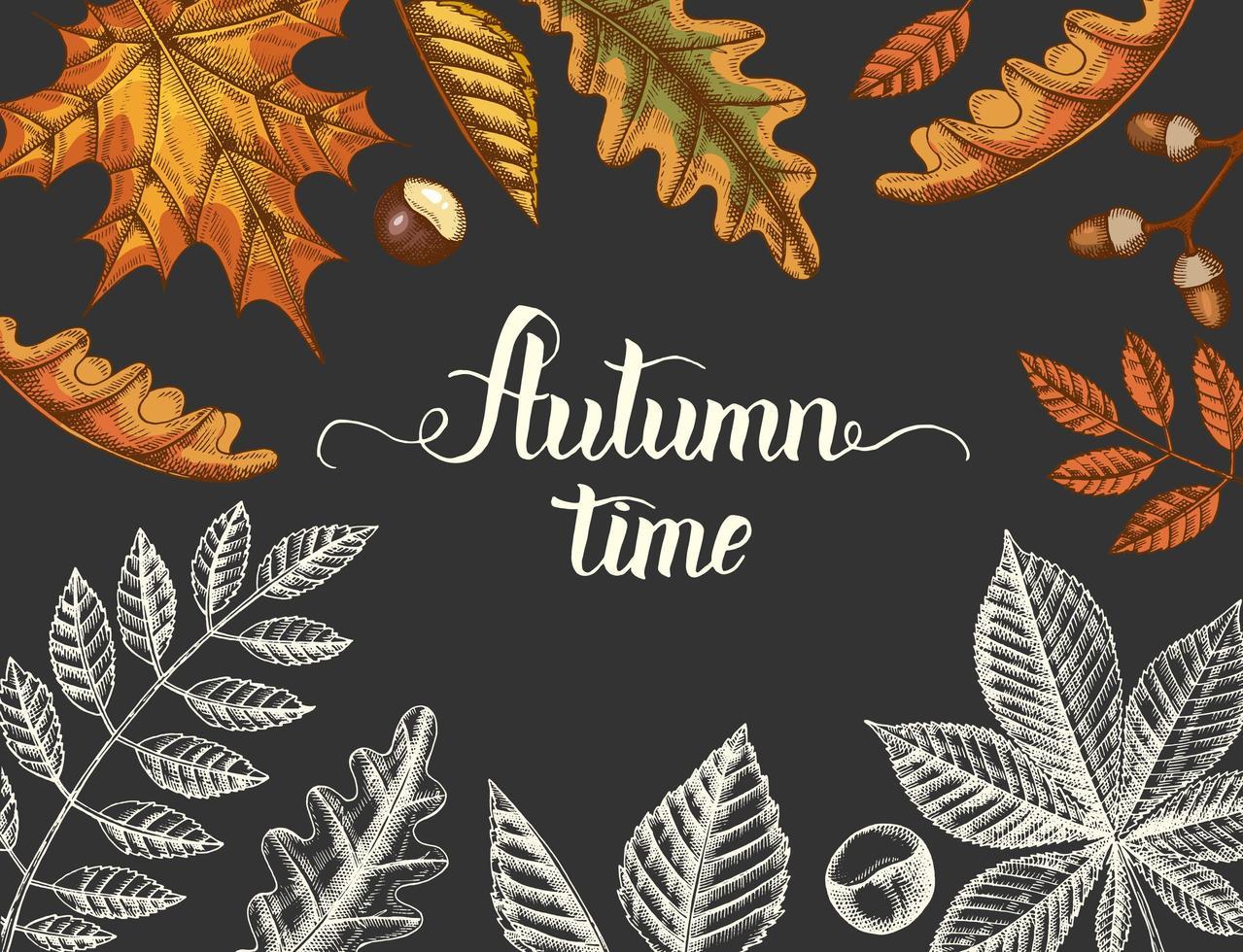 fondo de otoño vintage con hojas dibujadas a mano vector