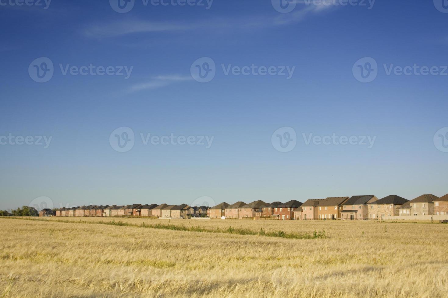 casas invadiendo tierras de cultivo. la expansión urbana. foto