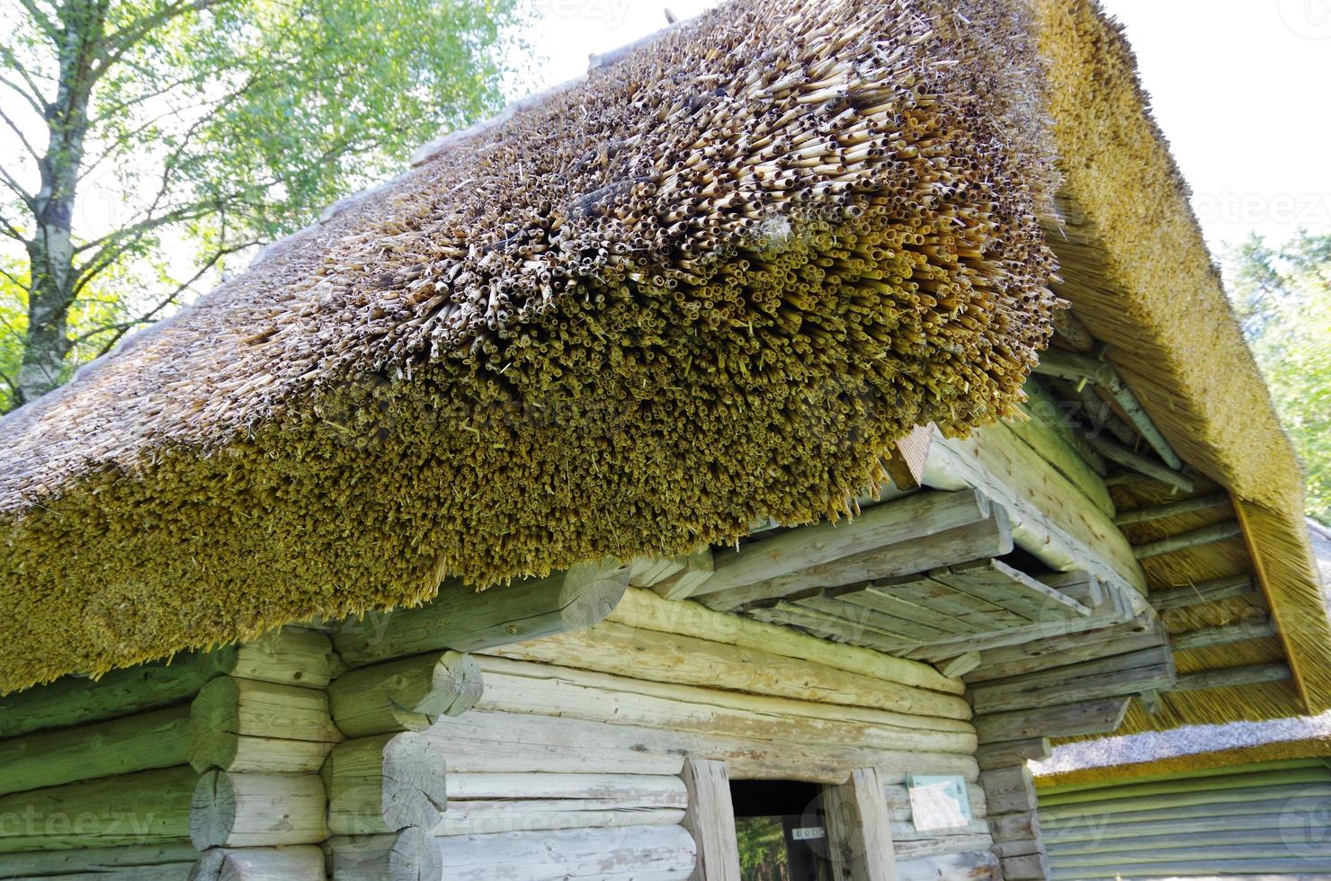 House with thatched roof in Estonia photo