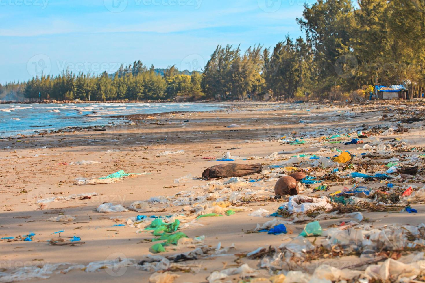 Terrible pollution of the ocean shore. photo