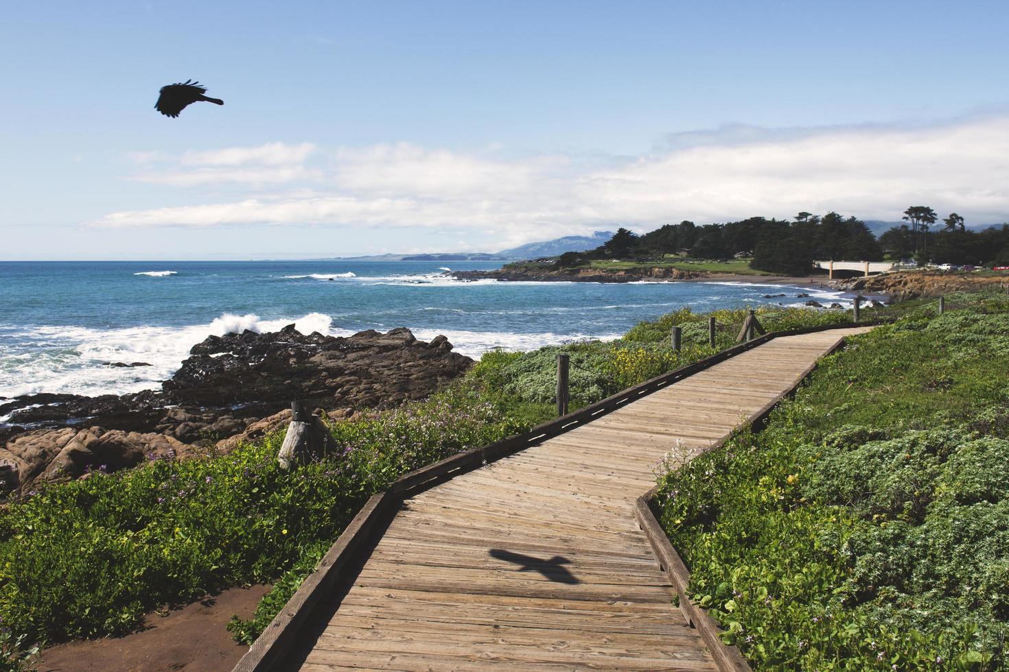 paseo marítimo de madera cerca de la playa foto
