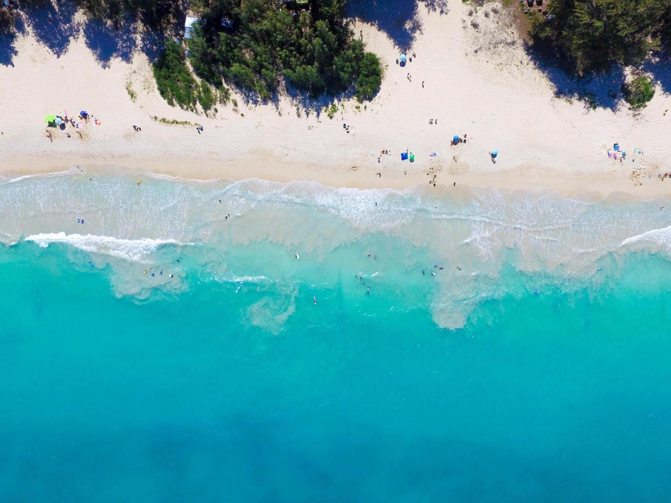 Aerial view photography of people sunbathing  photo