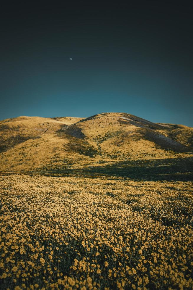 campo cerca de colinas bajo un cielo azul foto