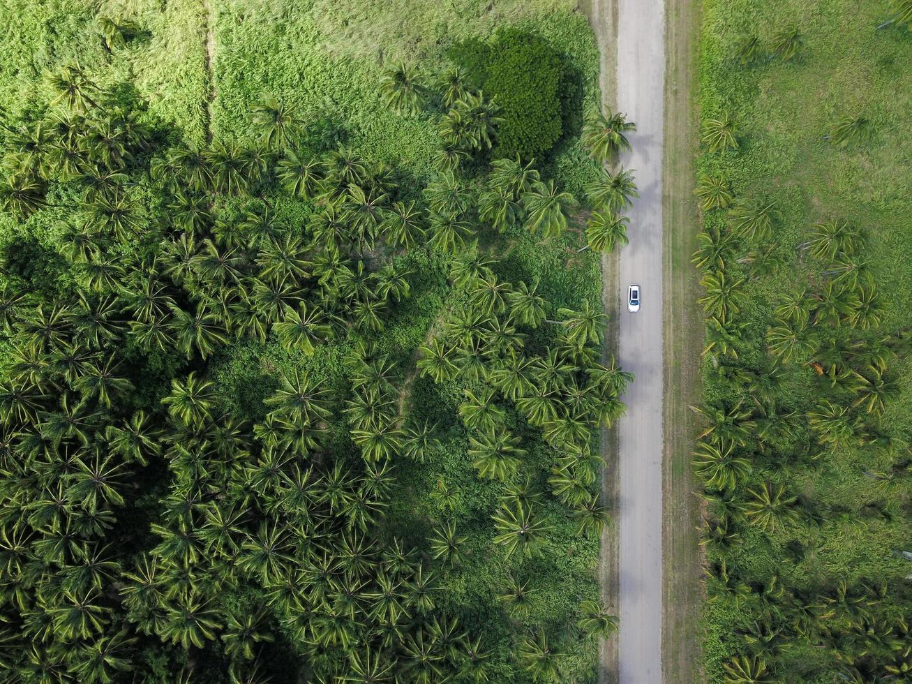 Aerial photography of vehicle on road  photo