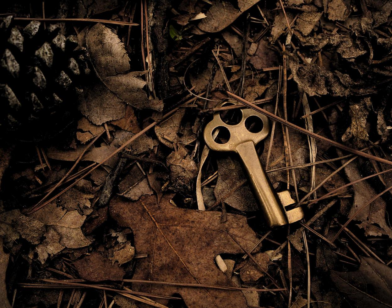 Skeleton key surrounded by dry leaves photo