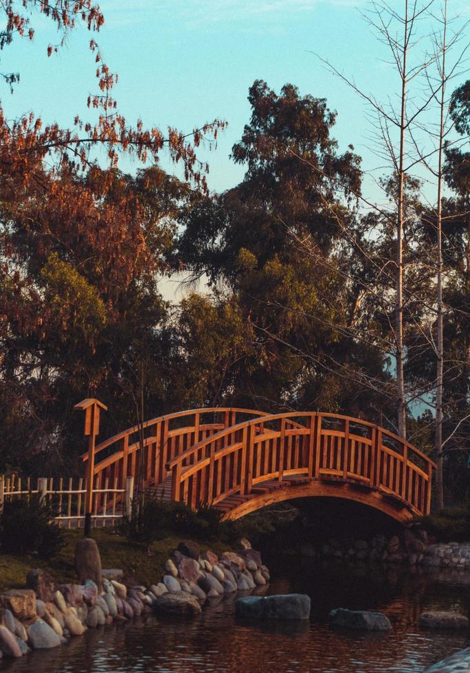 Wooden bridge over pond photo