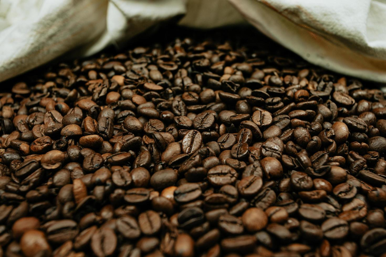 A lot of coffee beans photo