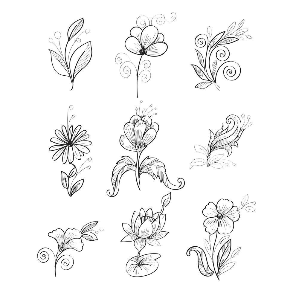 flores dibujadas a mano en estilo sektch vector