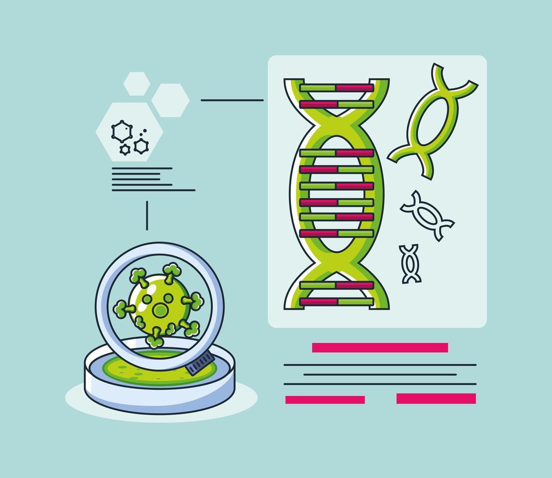 infografía con una molécula de adn e investigación de coronavirus. vector