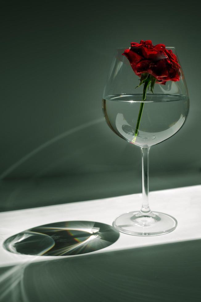 rosa roja en vidrio foto