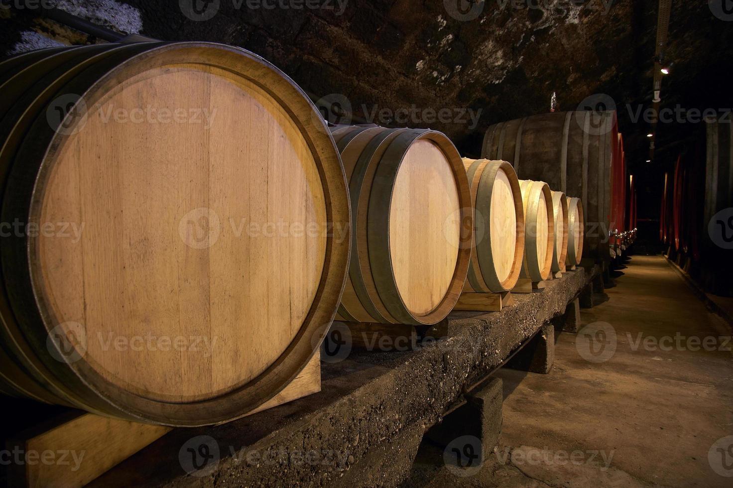 Wine barrels in cellar photo