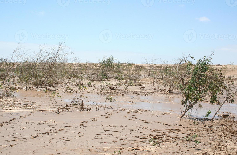 Camino de la sal fangosa después de fuertes lluvias, costa de los esqueletos, Namibia, África foto