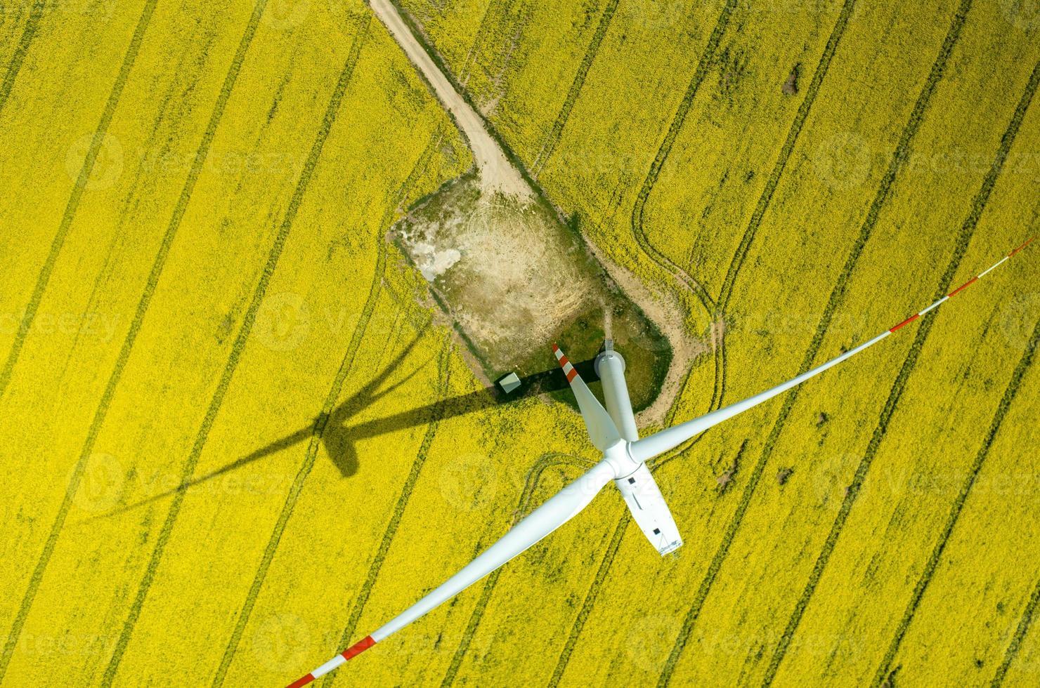 Windmills aerial view photo