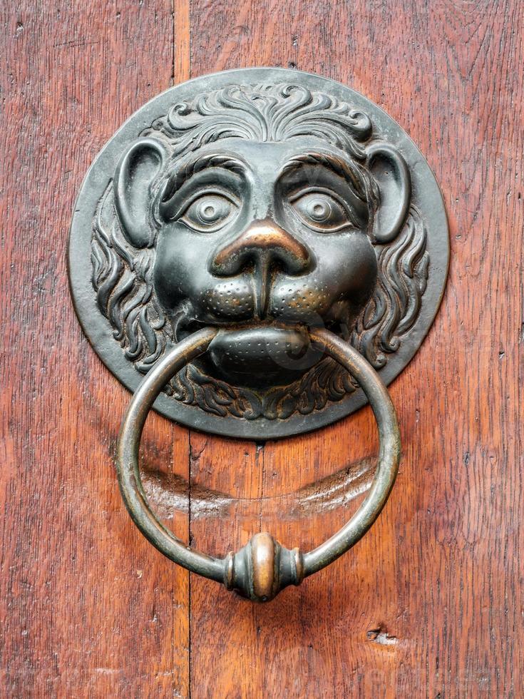Pomo de león vintage en puerta antigua, fondo foto