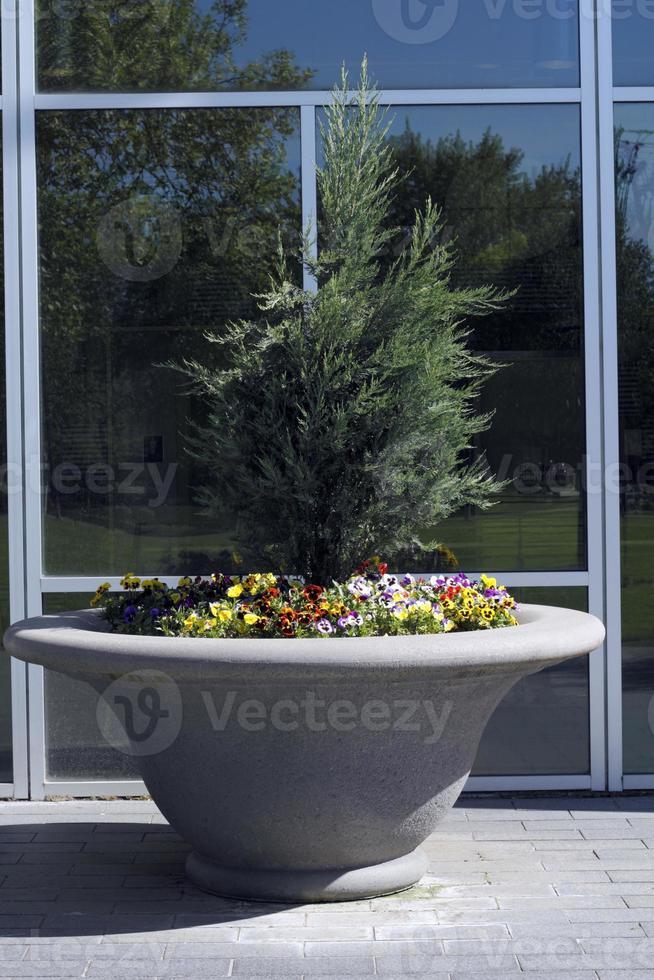 Large Flower Planter photo