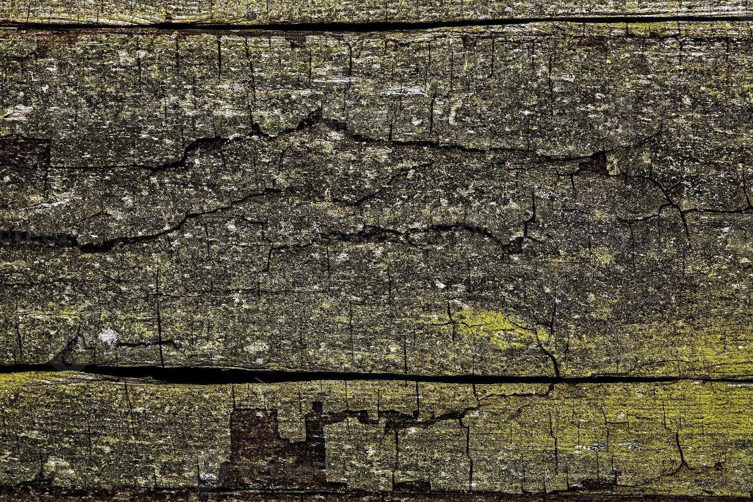 The old plank, background or texture photo