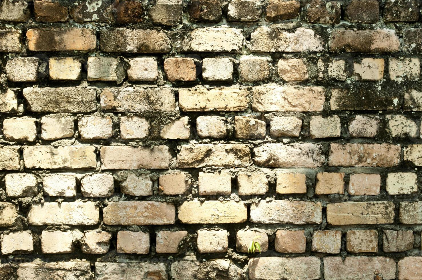 dirty wall background photo