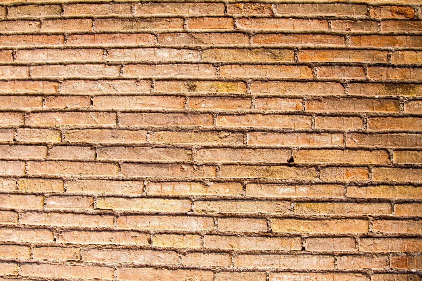 textura de la pared foto