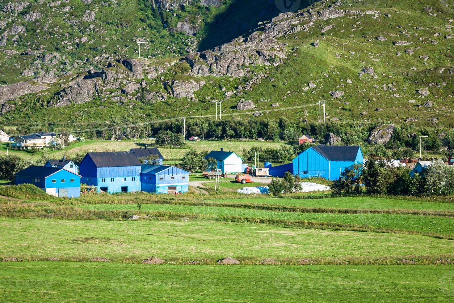 Casas coloridas tradicionales noruegas, islas Lofoten, Noruega foto