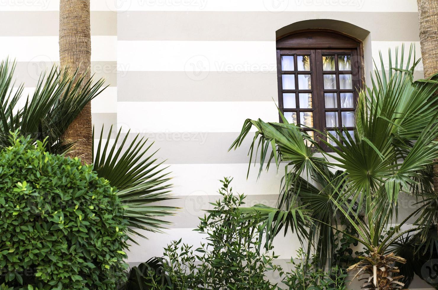 la ventana del edificio. foto