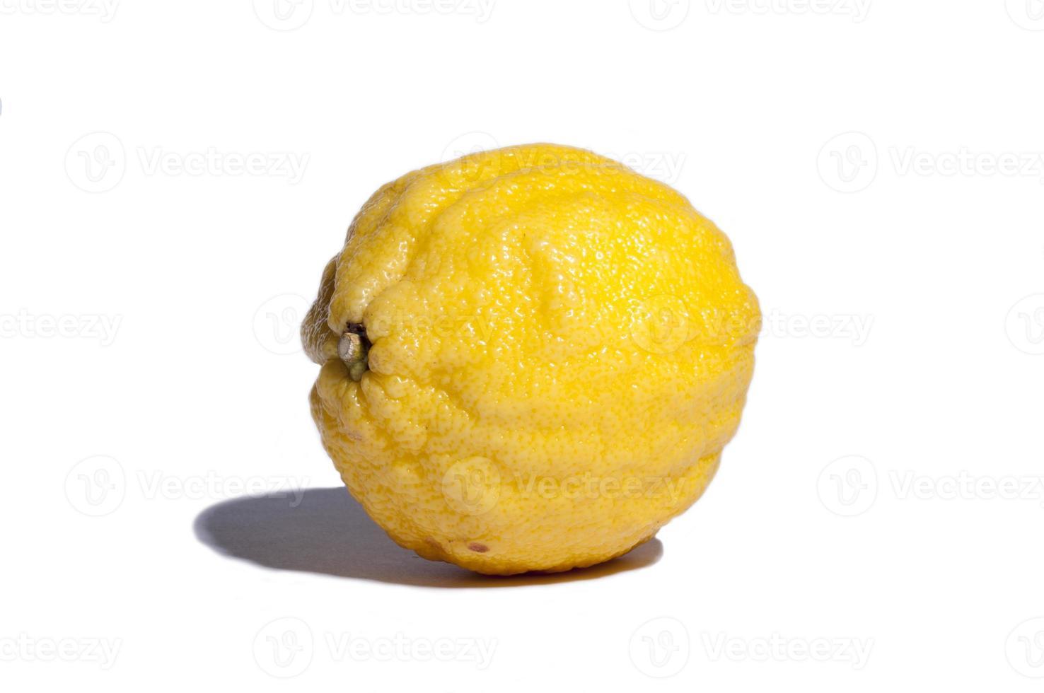 limón aislado sobre fondo blanco foto