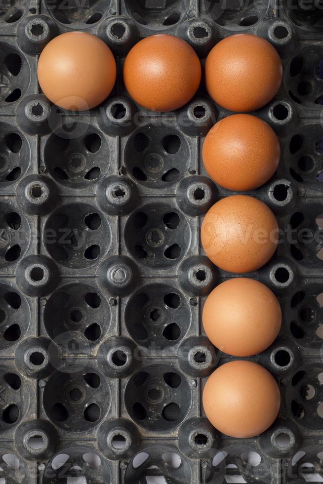 Nummer sieben der Eier von der Hühnerfarm in der Packung foto