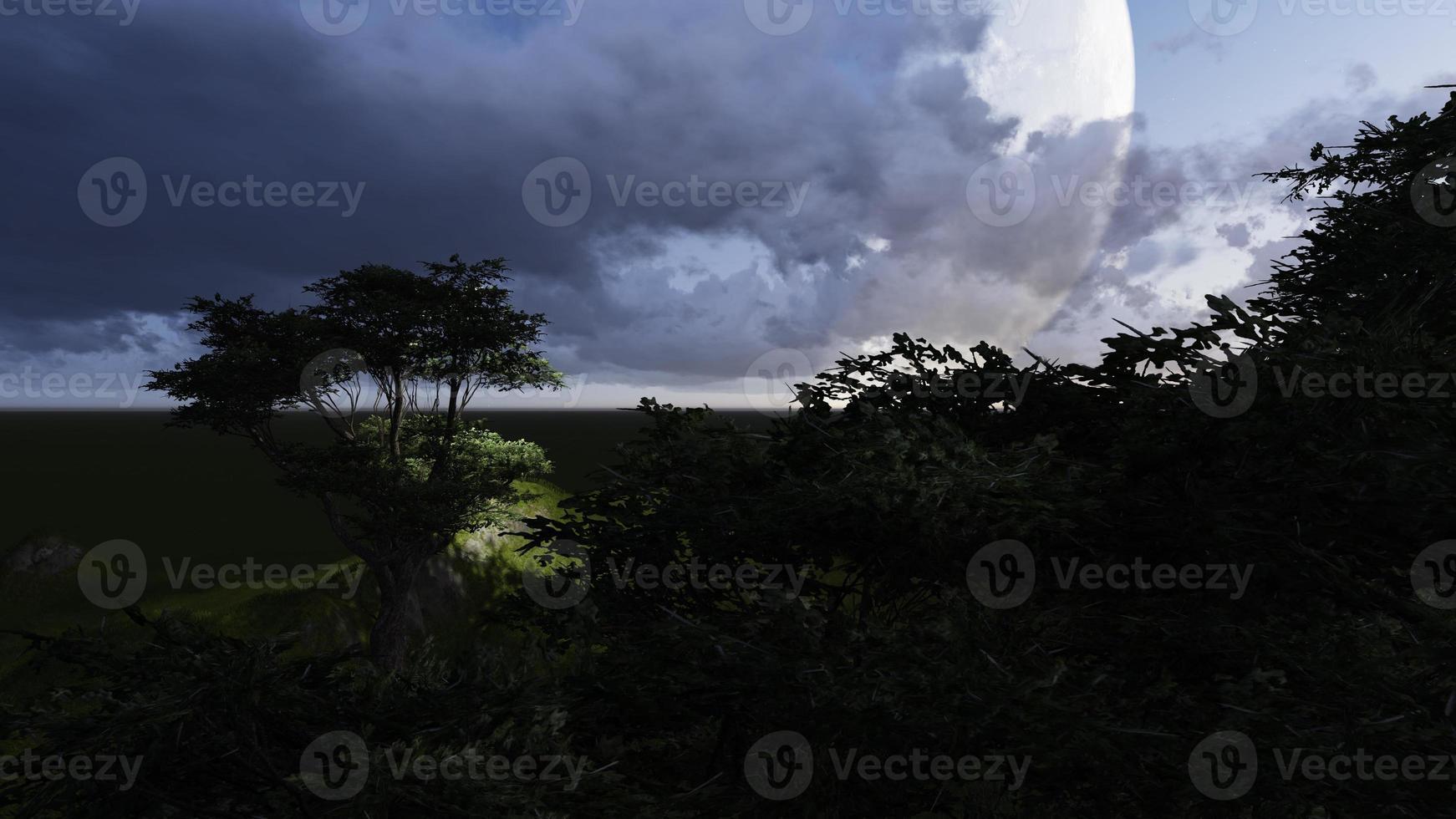 Moon night photo