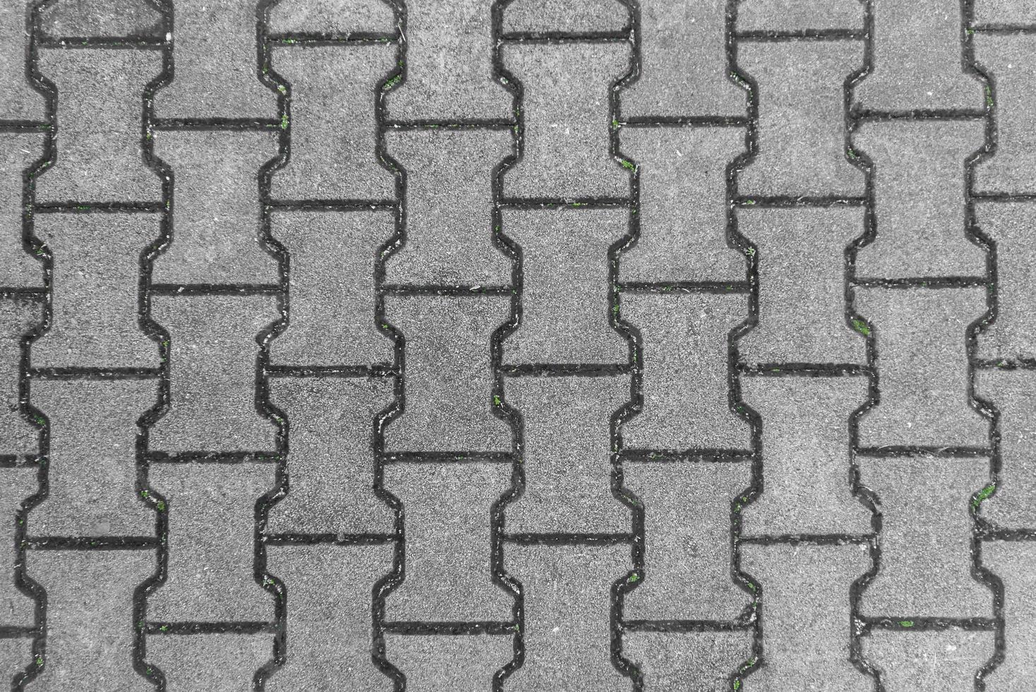 azulejos de la calle con musgo foto