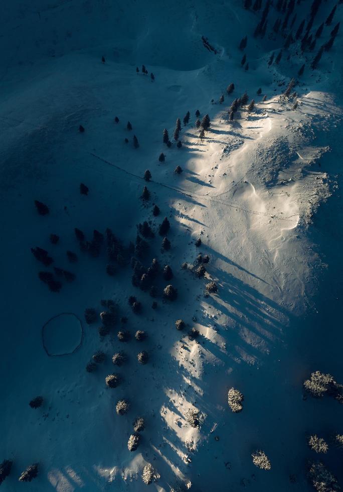 foto aérea del campo nevado