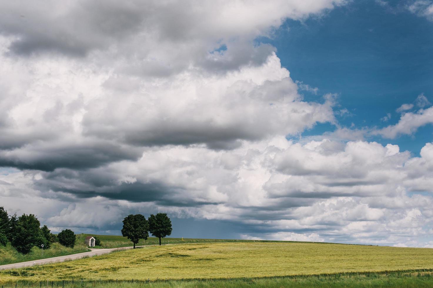 Green grass field under white clouds photo