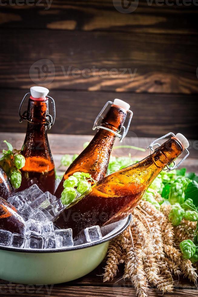 cerveza de sidra fresca y fría foto