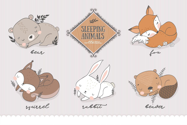 coleção de personagens da floresta a dormir. vetor