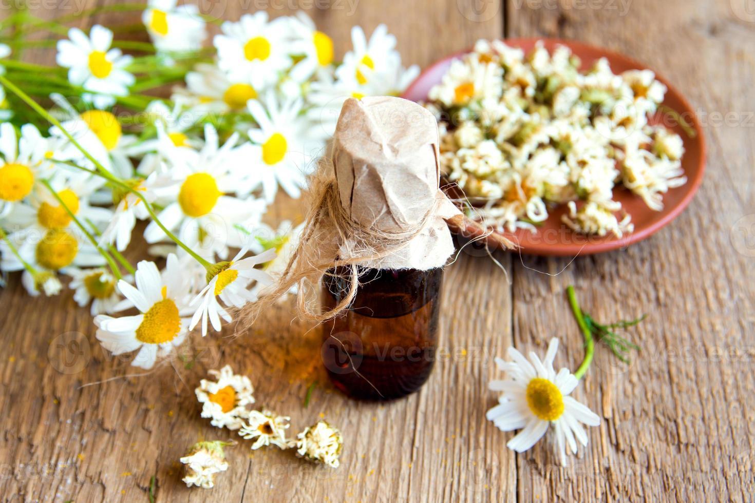 chamomile products photo