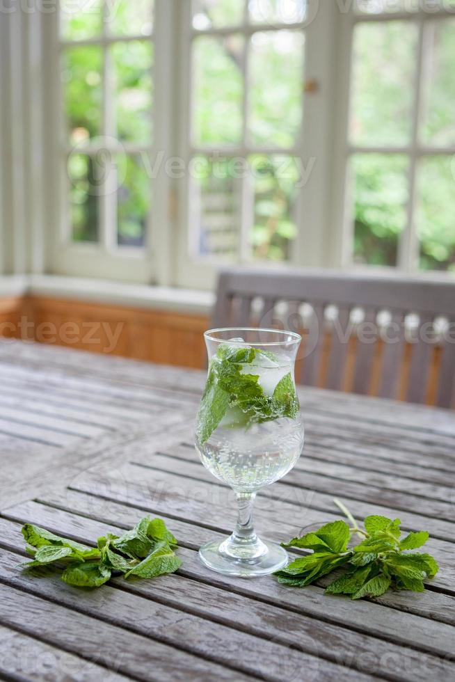 Mojito with mint photo
