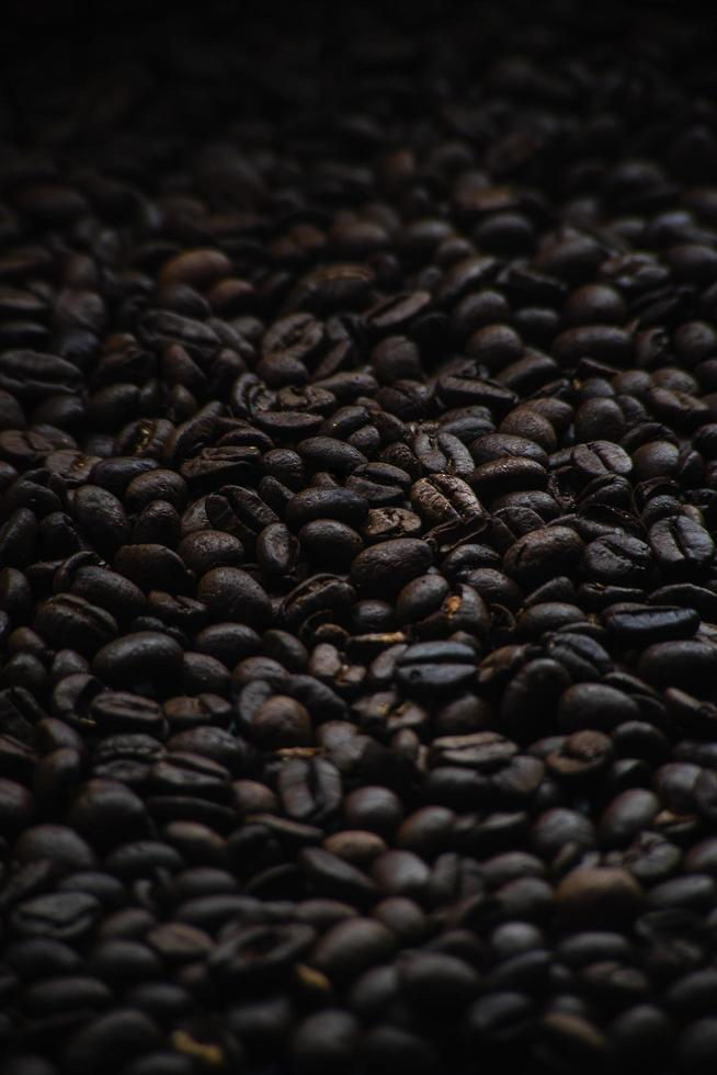 Moody coffee beans photo