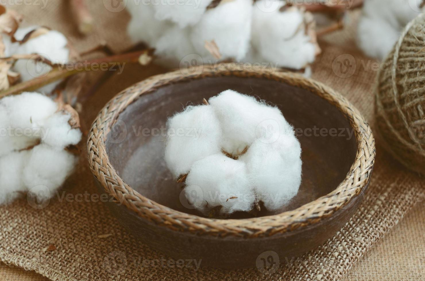 Floral decor with dry cotton flower in vintage wooden bowl photo
