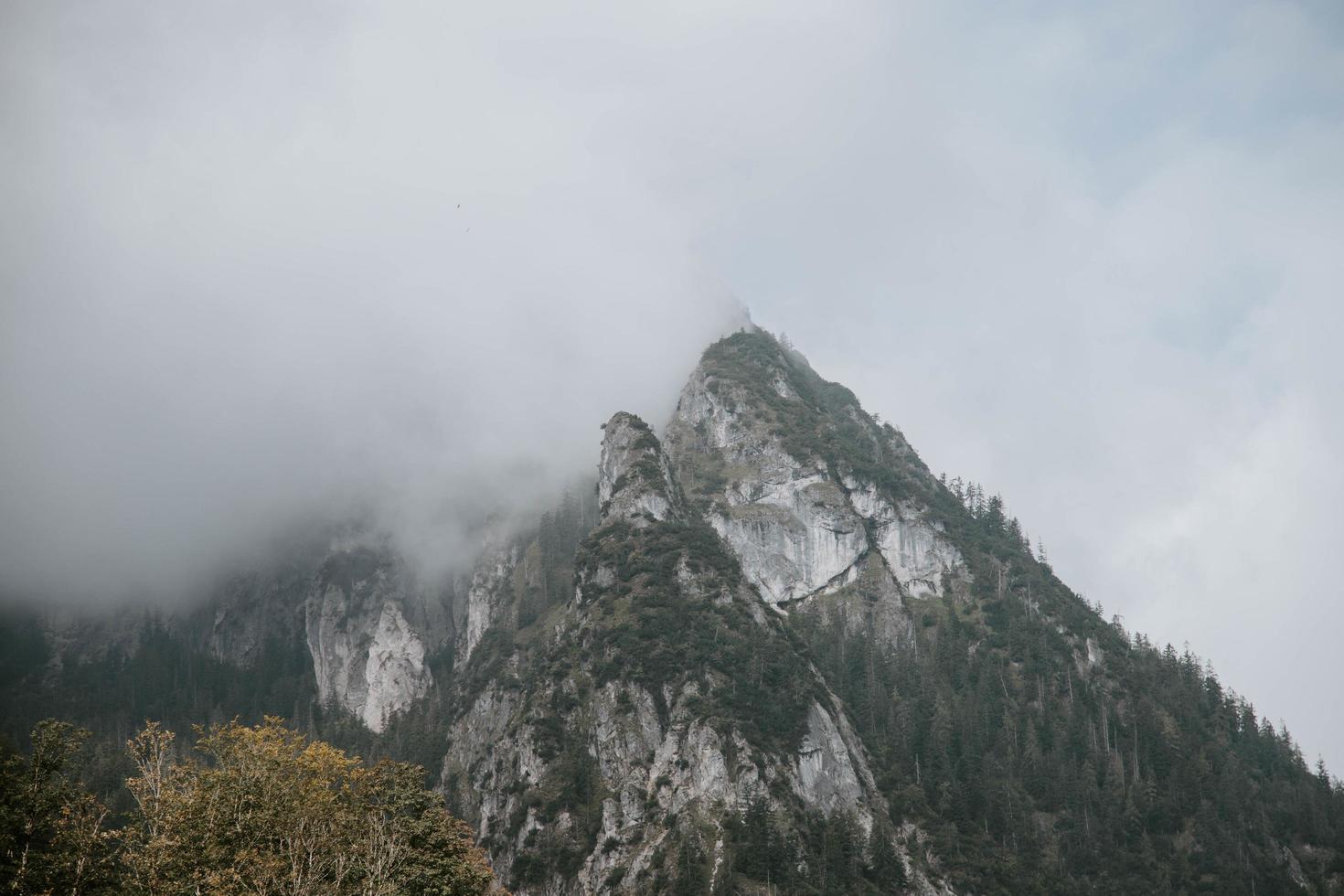 montaña rodeada de niebla foto