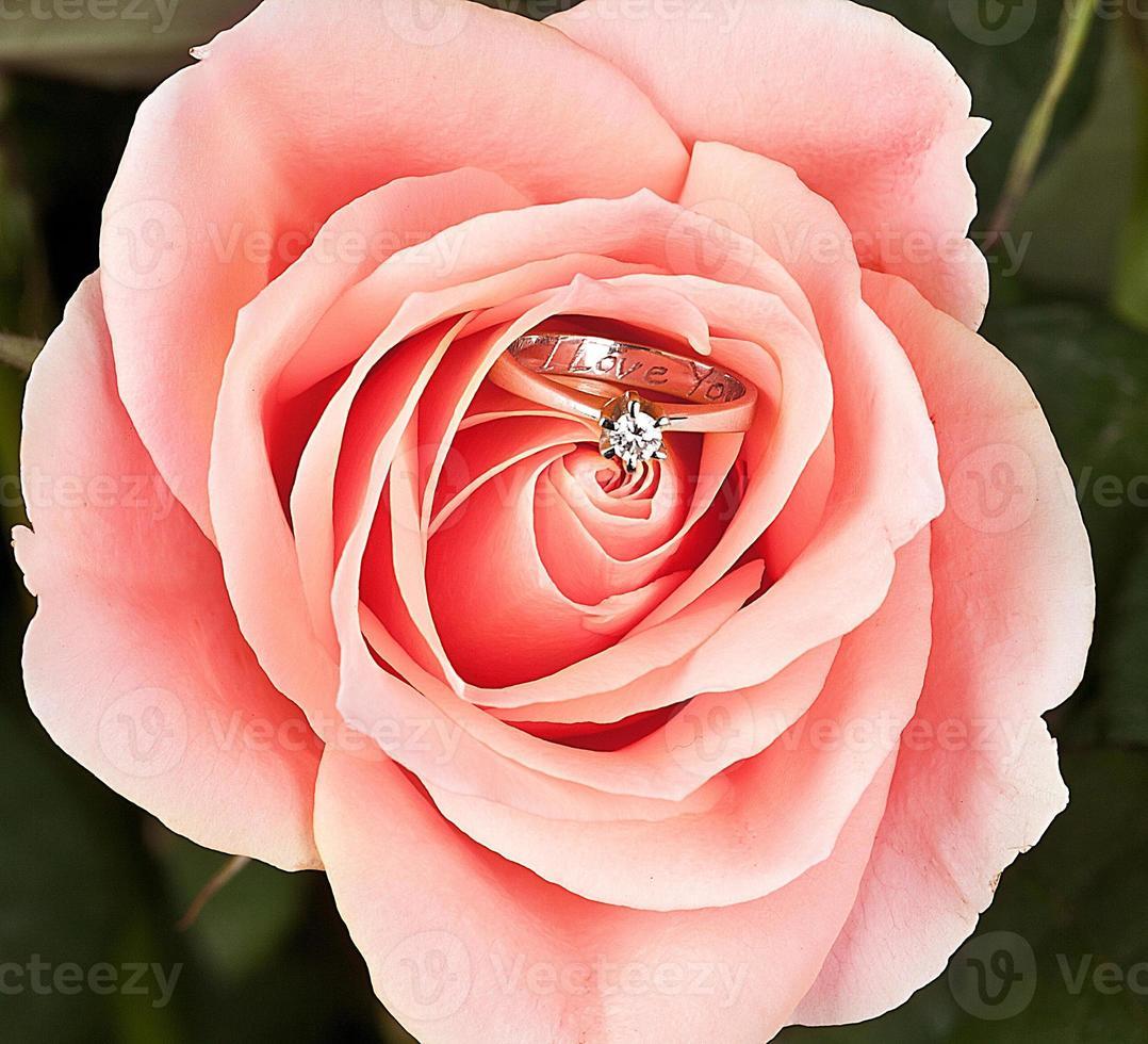 wedding ring in pink elegant rose photo