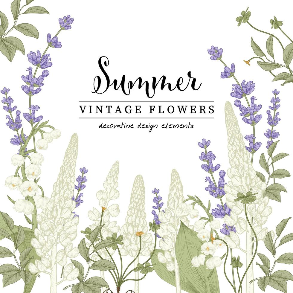 Lavender and Lupine drawing set vector